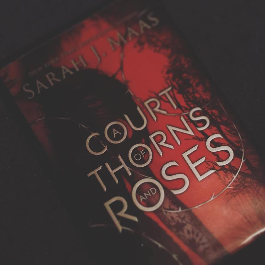 Mini Review: A Court of Thorns and Roses by Sarah J.Maas