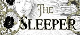 The Sleeper and The Spindle by NeilGaiman